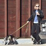Kate Mara Walks Her Dogs With Jamie Bell in Los Feliz 12/17/2016-5