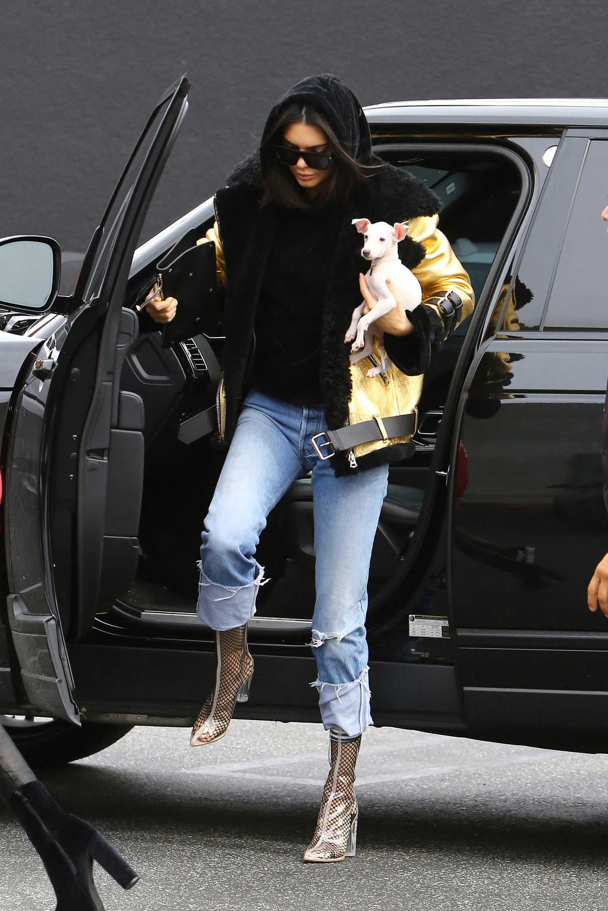 Kendall Jenner Out Shopping in West Hollywood 01/02/2017-3
