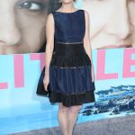 Anne Heche at the Big Little Lies Premiere at TCL Chinese Theaterin Los Angeles 02/07/2017