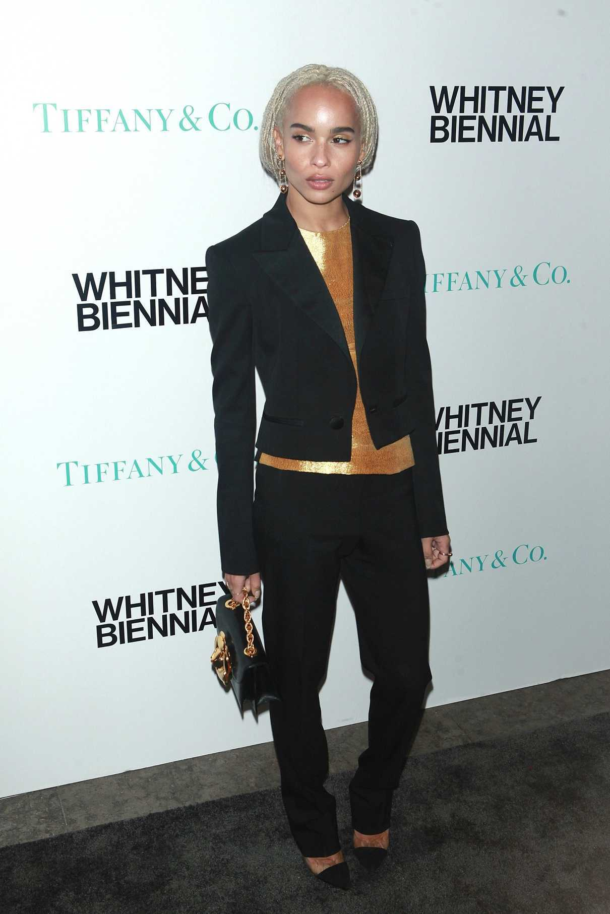 Zoe Kravitz at the 2017 Whitney Biennial Presented by Tiffany and Co in New York City 03/15/2017-2