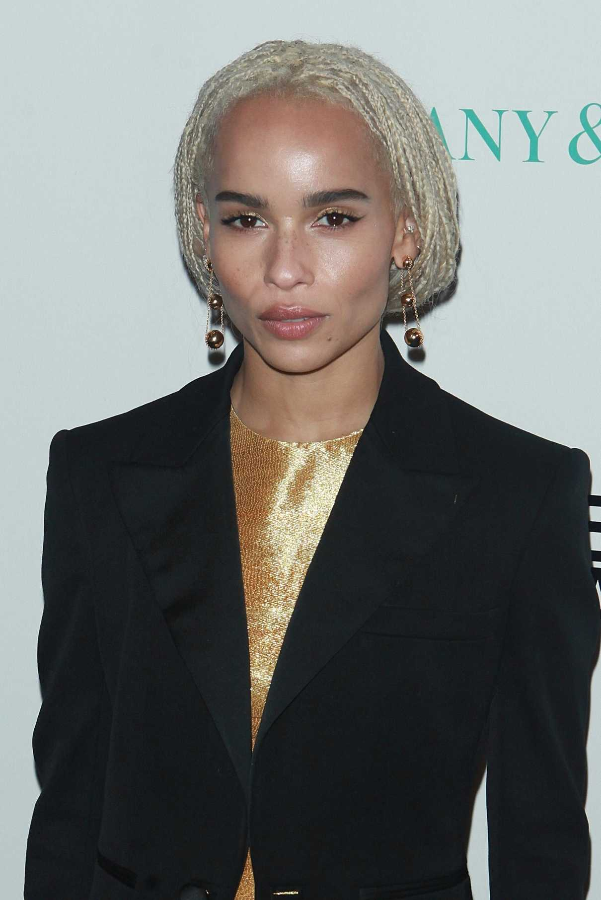 Zoe Kravitz at the 2017 Whitney Biennial Presented by Tiffany and Co in New York City 03/15/2017-5