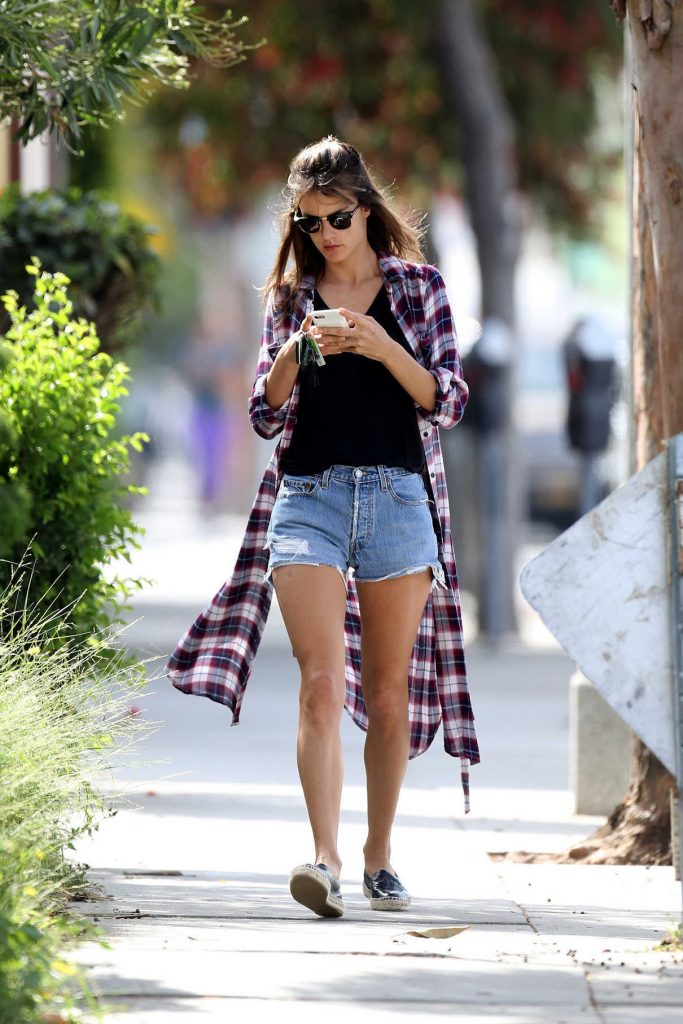Alessandra Ambrosio Was Seen Out in Los Angeles 04/24/2017-1