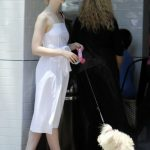 Elle Fanning Was Seen in Studio City 06/23/2017-2