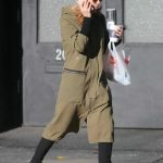 Kate Mara Was Seen Out in NYC 11/10/2017-5