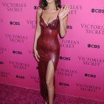 Bella Hadid at 2017 Victoria's Secret Fashion Show in New York 11/28/2017-2
