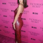 Bella Hadid at 2017 Victoria's Secret Fashion Show in New York 11/28/2017-3