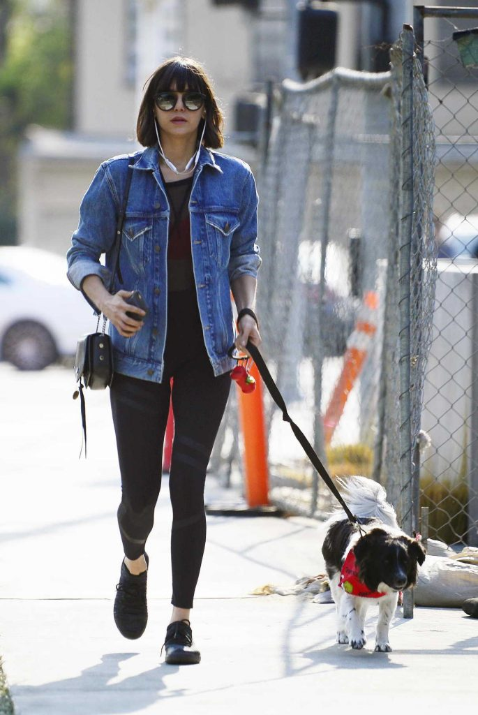 Nina Dobrev Takes Her Dog Maverick for a Walk in Hollywood 12/16/2017-1