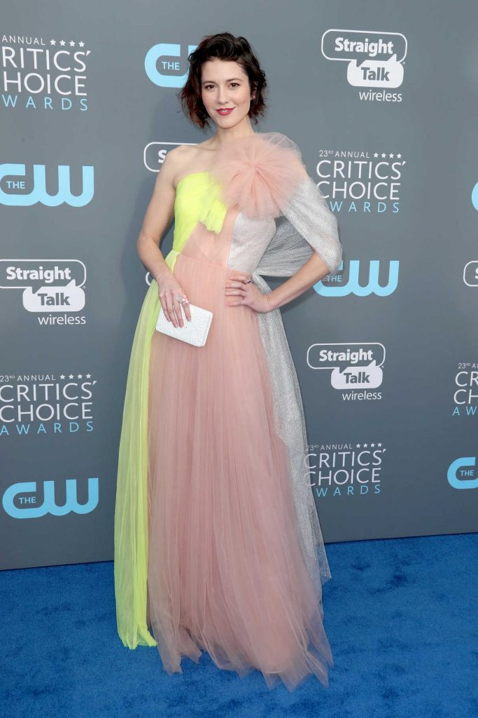 Mary Elizabeth Winstead at the 23rd Annual Critics' Choice Awards in Santa Monica 01/11/2018-1