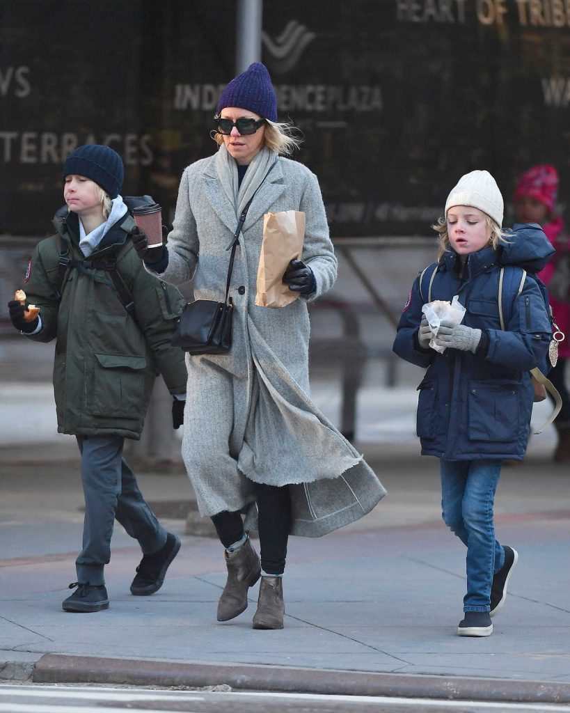 Naomi Watts Was Seen Out in NYC 01/24/2018-1