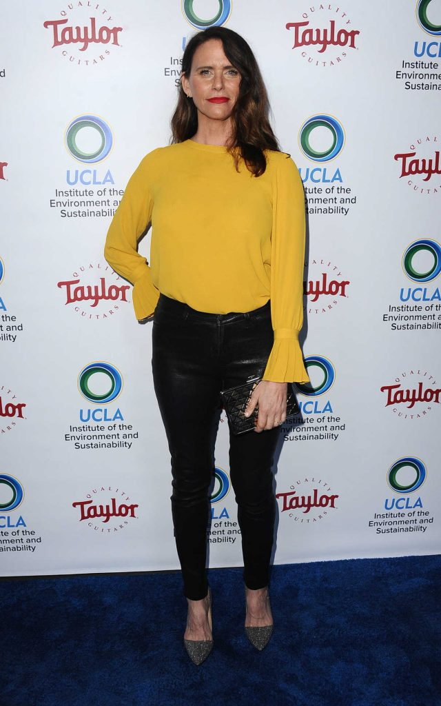 Amy Landecker at UCLA's Institute of the Environment and Sustainability Gala in Los Angeles 03/22/2018-1