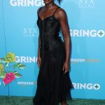 Lupita Nyong'o at Gringo Premiere in Los Angeles 03/06/2018-8