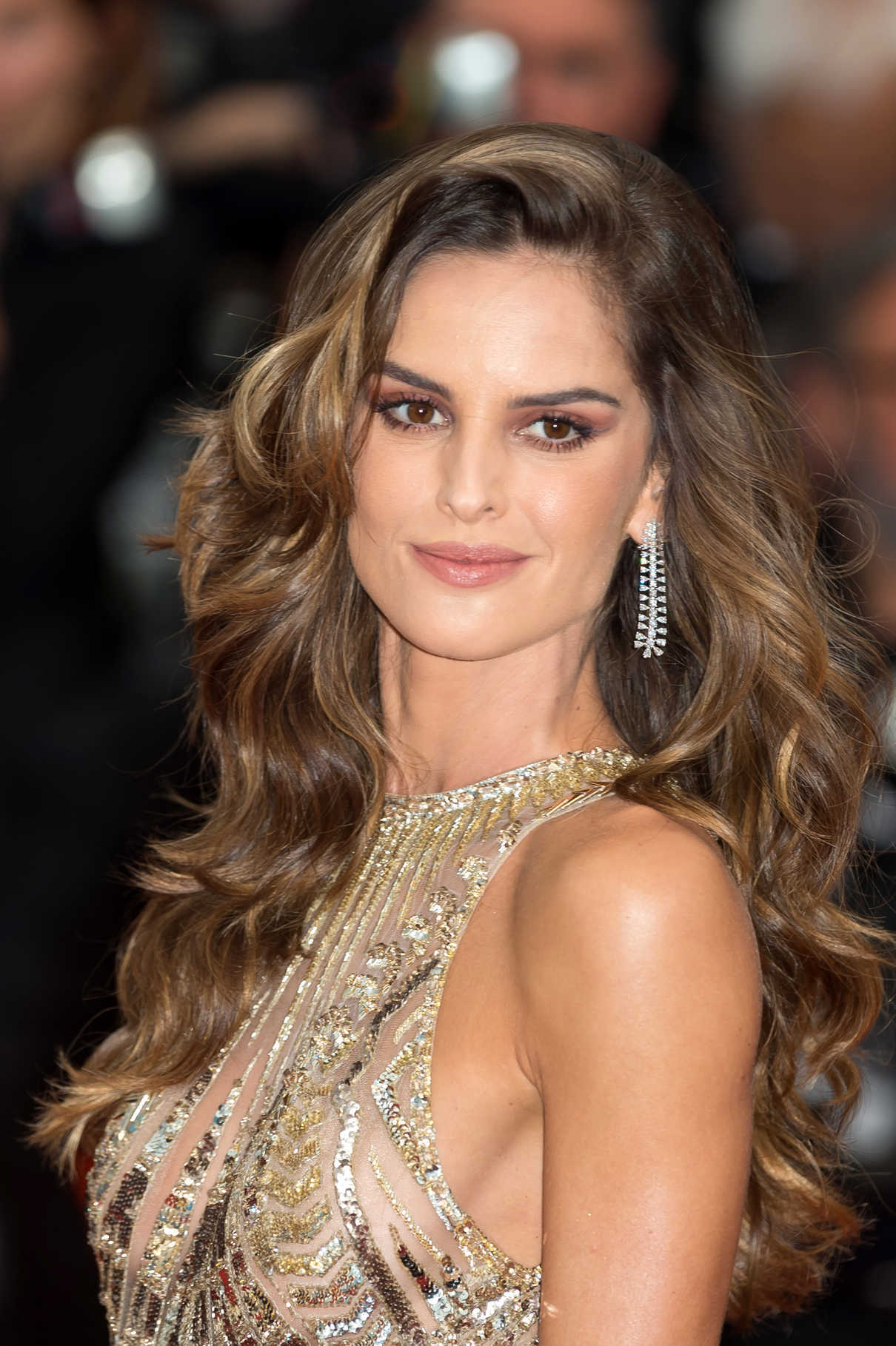 Izabel Goulart at the Burning Premiere During the 71st Cannes Film Festival in Cannes 05/16/2018-5