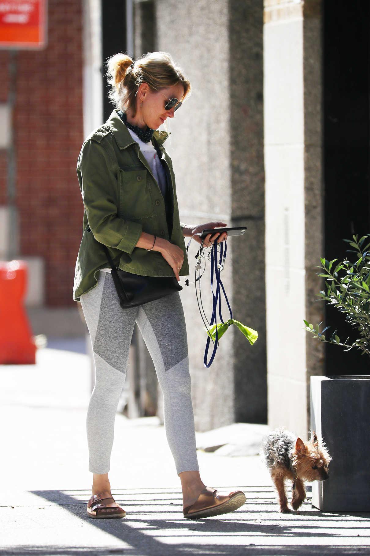 Naomi Watts Walks Her Dog in New York City 06/11/2018-4