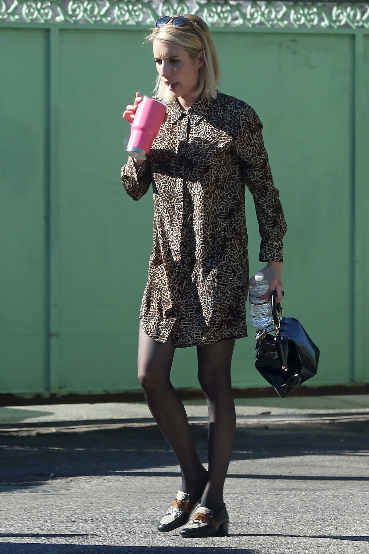Emma Roberts in a Leopard Print Dress