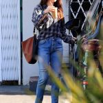 Dakota Johnson in a Plaid Shirt