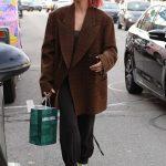 Hailey Baldwin in a Brown Plaid Coat