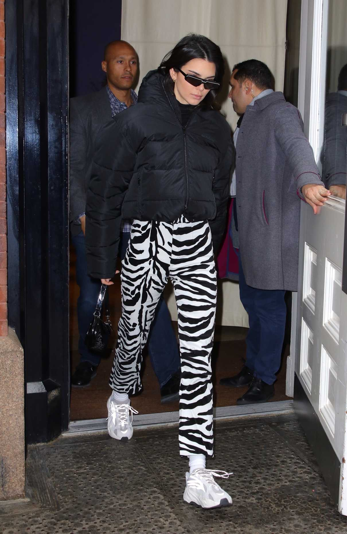 Kendall Jenner in a Zebra Print Pants