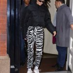 Kendall Jenner in a Zebra Print Pants