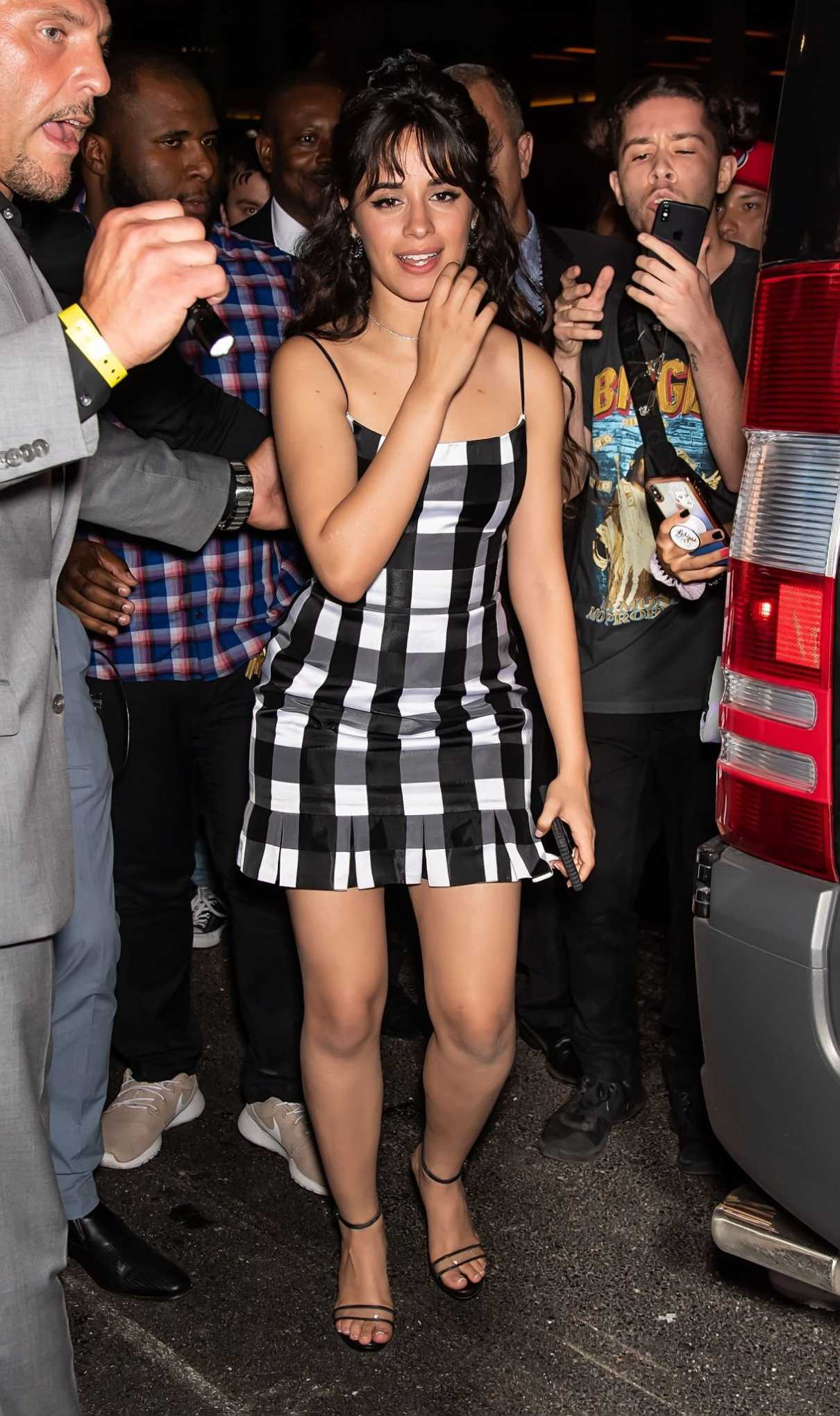 Camila Cabello in a Short Plaid Dress