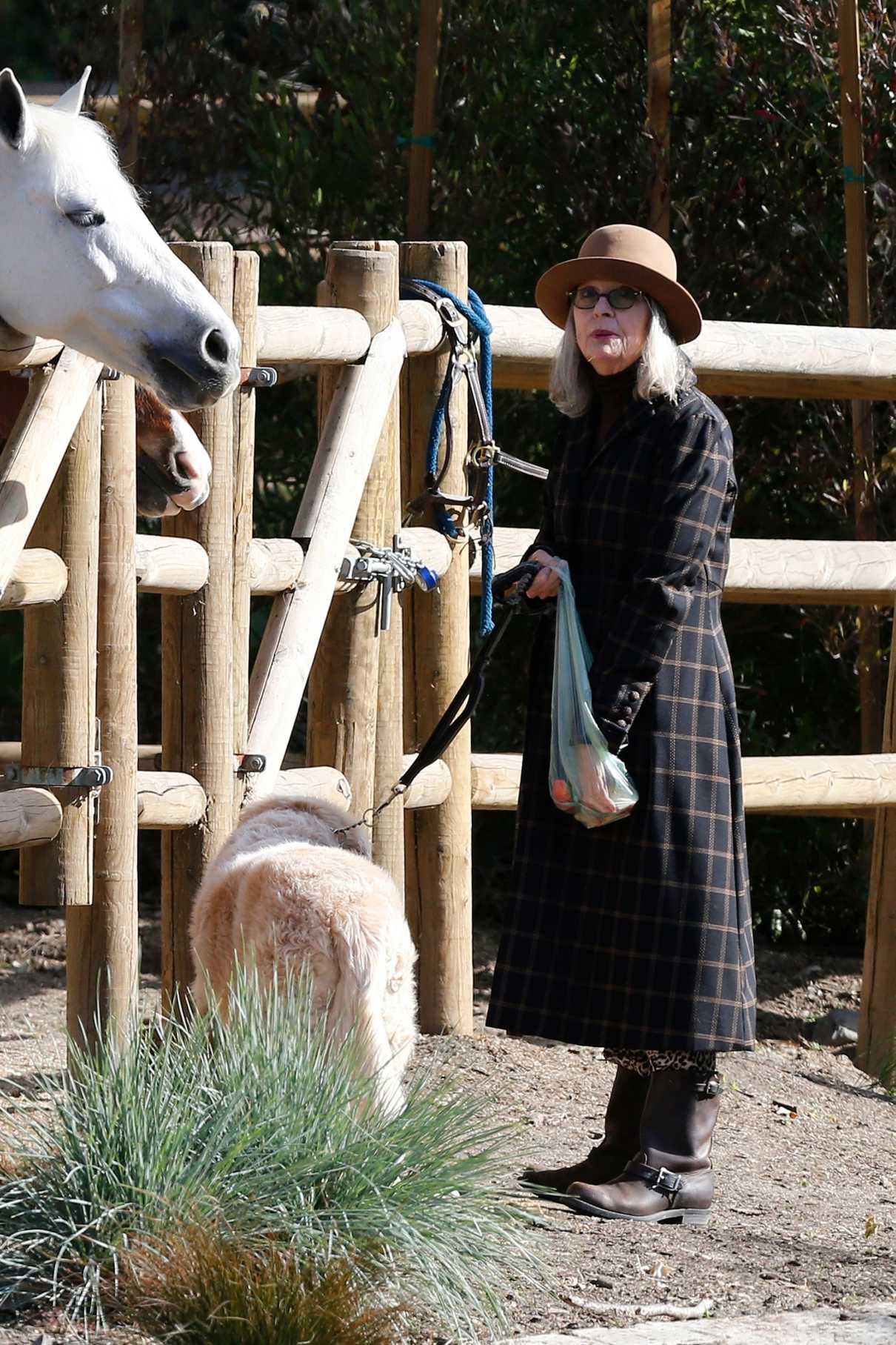 Diane Keaton in a Tan Hat