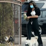 Sara Sampaio in a Protective Mask Walks Her Dogs Near Her Home in Los Angeles 05/09/2020