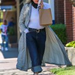 Diane Keaton in a Gray Striped Trench Coat Leaves the Dentist Office in Brentwood 06/10/2020