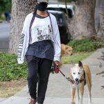 Regina King in a Camo Cap Walks Her Dog in Los Feliz 06/28/2020
