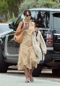 Jordana Brewster in a Beige Dress
