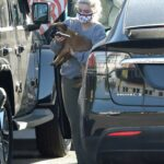 Ariel Winter in a Grey Sweatshirt Takes Her Dog to a Veterinarian in Los Angeles 11/09/2020