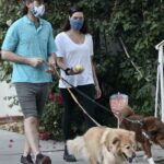 Aubrey Plaza in a White Tee Walks Her Dogs Out with Her Fiance Jeff Baena in Los Feliz 11/01/2020