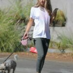Chrishell Stause in a White Tee Walks Her Dog in in Los Angeles 11/08/2020