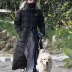 Diane Keaton in a Black Puffer Coat Takes Her New Puppy Reggie for a Walk in Brentwood 11/13/2020