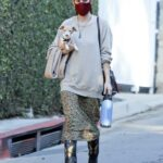 Scout Willis in a Red Protective Mask Was Seen Out with Her Dog in Los Feliz 11/13/2020