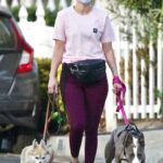 Ariana Madix in a Pink Tee Walks Her Dogs in Los Angeles 12/06/2020