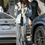 Eiza Gonzalez in a Striped Pants Steps Out for a Coffee Run to Alfred in Los Angeles 12/12/2020