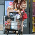 Phoebe Price in a Beige Hat Does a Grocery Run in Los Angeles 01/09/2021