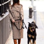 Emily Ratajkowski in a Beige Trench Coat Walks Her Dog in New York 02/26/2021