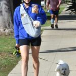Lucy Hale in a Blue Sweatshirt Walks Her Dogs in Studio City 02/11/2021