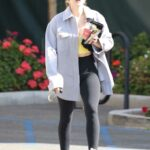 Lucy Hale in a Grey Shirt Exits Erewhon Market in Los Angeles 03/09/2021
