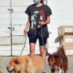 Aubrey Plaza in a Black Tee Walks Her Dogs in Los Feliz 04/20/2021