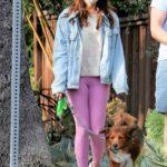 Aubrey Plaza in a Pink Leggings Walks Her Dogs Out with Jeff Baena in Los Feliz 04/06/2021