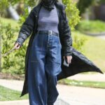 Diane Keaton in a Black Hat Walks Her Dog in Los Angeles 05/02/2021
