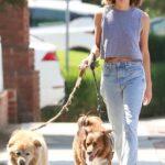 Aubrey Plaza in a Grey Top Walks Her Dogs in Los Feliz 08/15/2021